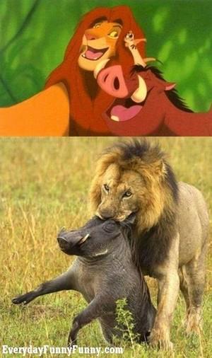 simba and pumbaa