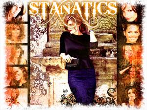 stanatics