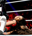 Survivor Series Digitals 11/24/13 - aj-lee photo