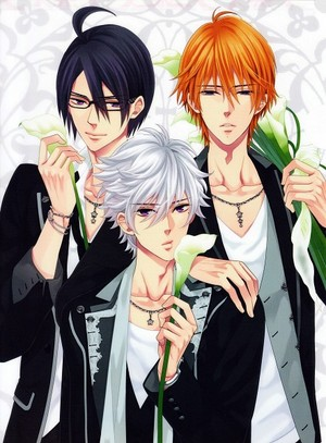 Brother's Conflict