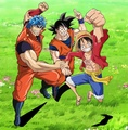 Toriko, Goku, and Luffy - anime photo