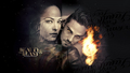 BEAUTY AND THE BEAST (KSRTEAM) - beauty-and-the-beast-cw wallpaper