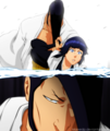 *Kirinji & Soi Fong* - bleach-anime photo