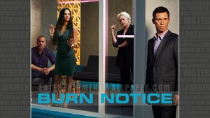 Burn Notice wolpeyper