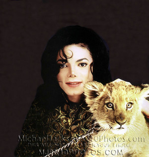 Michael Jackson With A Lion Cub