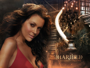 Charmed in the House of Magic 2
