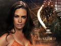 Charmed in the House of Magic 3