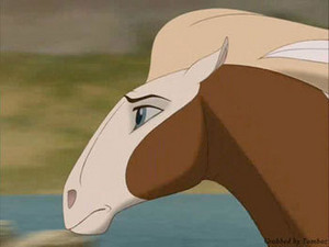 Rain from Spirit: Stallion of the Cimarron