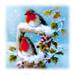 » christmas «