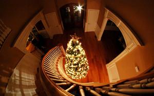 » 크리스마스 «