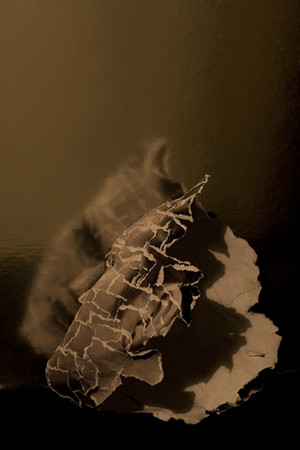 """In The Spotlight"" - Photosculpture of Clint Catalyst da David Meanix"