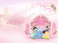 Princesses - disney-princess photo