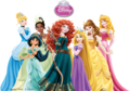 Disney Princess 2013  - disney-princess photo