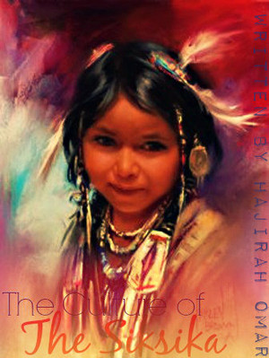 Native American project cover