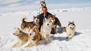 "2006 Дисней Film, ""Eight Below"""