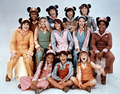 The Updated Version Of The Mickey Mouse Club In The Mid-70's - disney photo