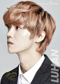 Luhan  (IVY CLUB) - exo-m photo
