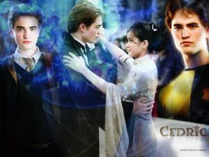 Twilight<333