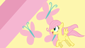 Fluttershy as a Filly Wallpaper - fluttershy photo