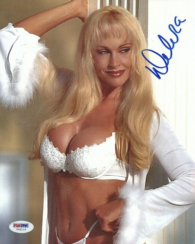 Former WWE Diva... Debra achtergrond possibly containing attractiveness and a portrait titled High Quality Autograph - White Lingerie