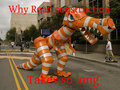 why road construction takes so long - funny-pictures photo