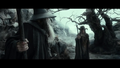 Gandalf the Grey - The Hobbit: The Desolation of Smaug