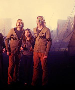 Ginny, Фред and George