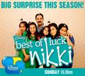 Best of luck Nikki - good-luck-charlie photo