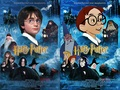 HARRY POTTER<33333 - harry-potter-vs-twilight photo