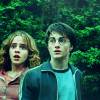 Harry and Hermione photo containing a portrait titled Harry and Hermione