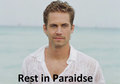 Paul Walker! - hottest-actors photo