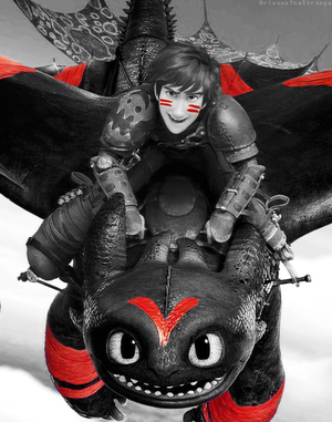 Older Hiccup and Toothless
