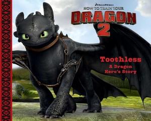 How To Train Your Dragon 2 boeken