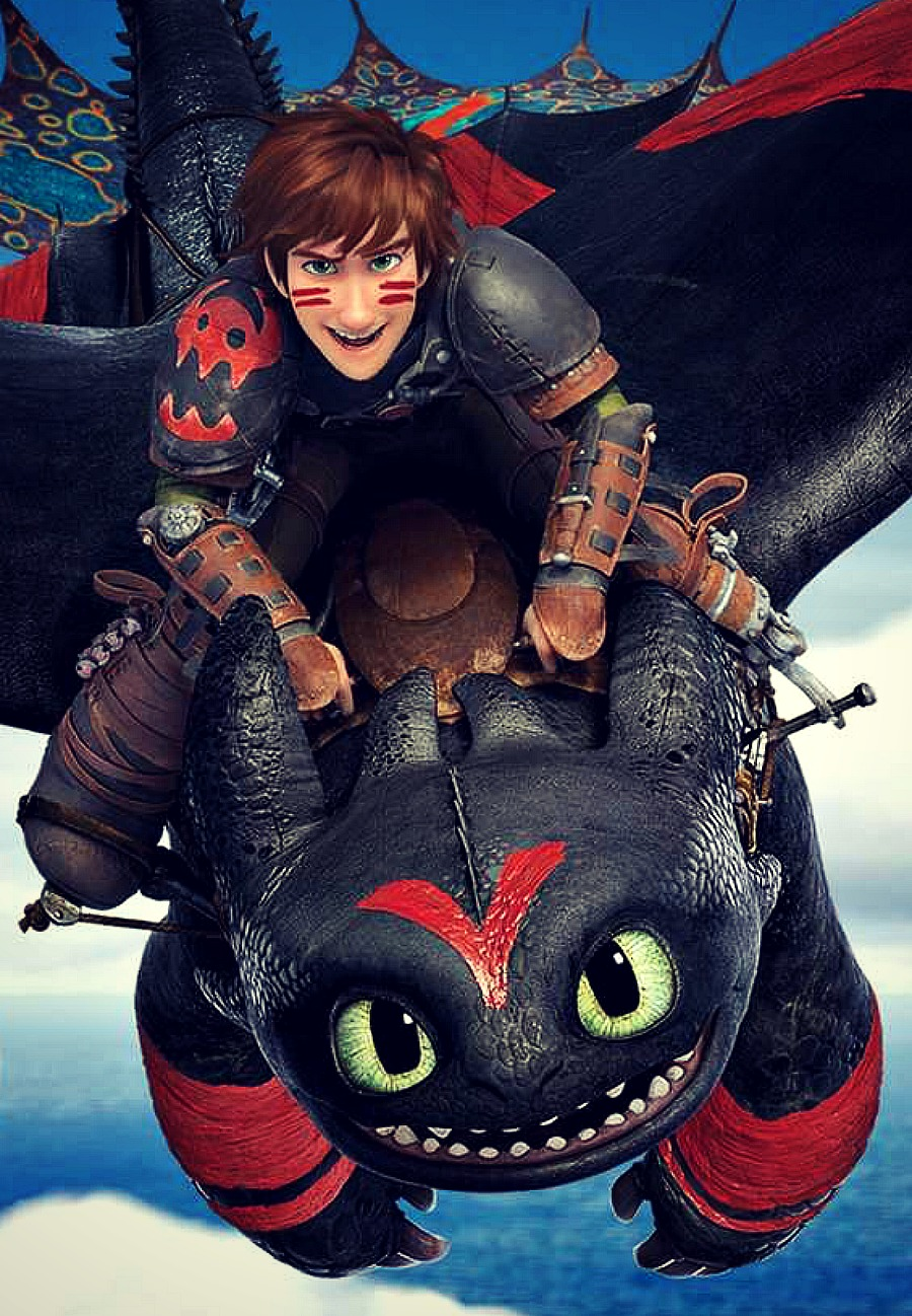 How To Train Your Dragon Images Older Hiccup And Toothless HD Wallpaper Background Photos