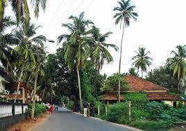 Goa Streetside