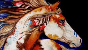 Native American Spirit