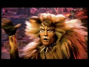 John as ron Tum Tugger