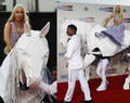 Lady GaGa American Music Awards 2013 - lady-gaga photo
