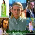 LOTR Elves