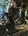 Lord Of The Rings - lord-of-the-rings photo