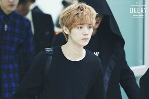 Luhan (루한) wallpaper entitled 131028 Haneda to Gimpo Airport