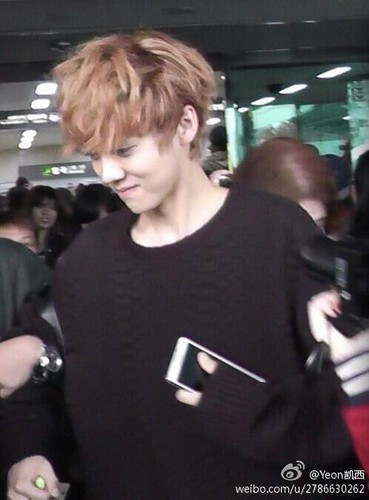 Luhan (루한) wallpaper called 131028 Haneda to Gimpo Airport