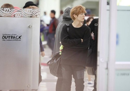 Luhan (루한) wallpaper probably containing a sign and a revolving door entitled 131028 Haneda to Gimpo Airport