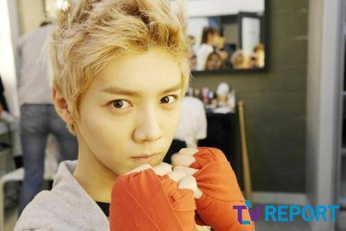 Luhan (루한) wallpaper entitled  EXO for TV Report