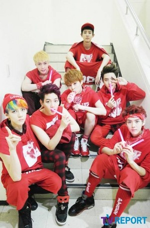 EXO for TV Report