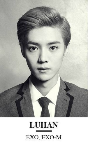 """Luhan (루한) wallpaper possibly with a business suit titled  Album """"XOXO (Kiss"""