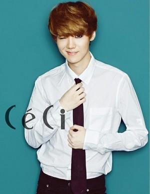 CeCi Korea February 2013 Issue