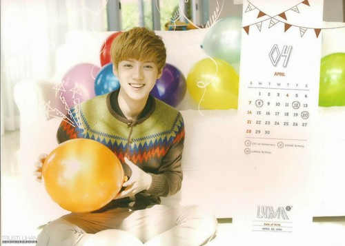 Luhan (루한) wallpaper entitled  EXO 2013 OFFICIAL Calendar