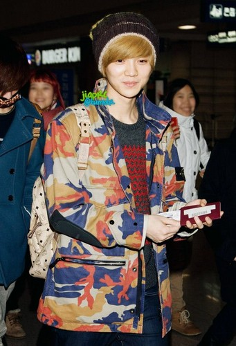 Luhan (루한) wallpaper entitled 130119 LuHan @ Incheon Airport to NAIA