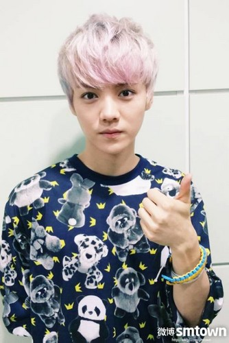 Luhan (루한) wallpaper entitled Luhan Selca